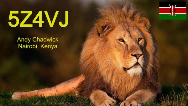 5z4vj_lion_flag